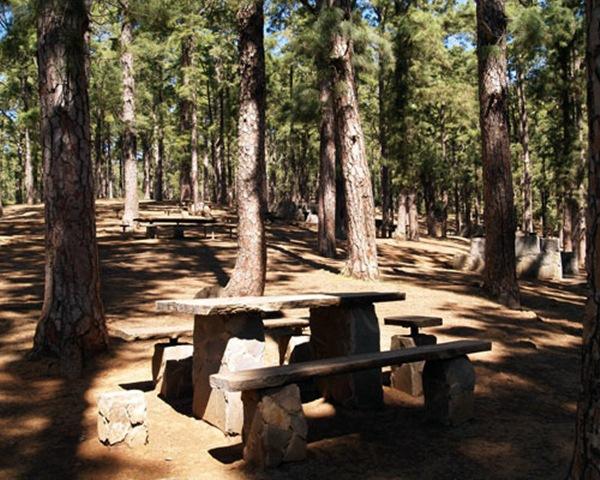 El parque recreativo de Las Raíces es uno de los más visitados de la isla de Tenerife. / DA