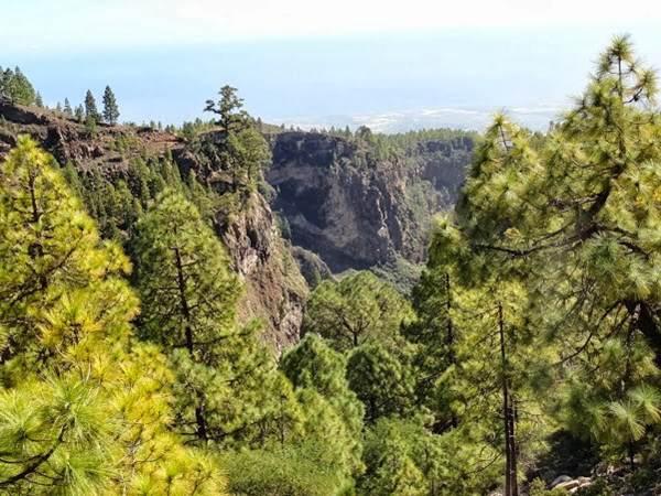 El barranco del Río, que nace en los altos de Guajara, es el de mayor altura de Tenerife. | DA