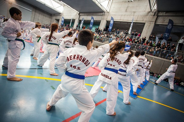 Los jóvenes del taekwondo mostraron su buen nivel. / DA