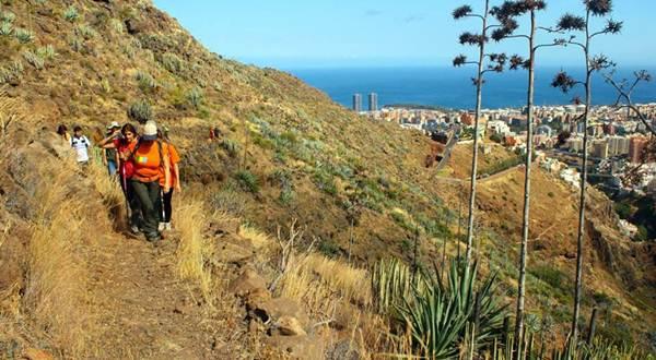 El camino de Las Lecheras es uno de los catalogados y sobre los que ya se está trabajando. | DA