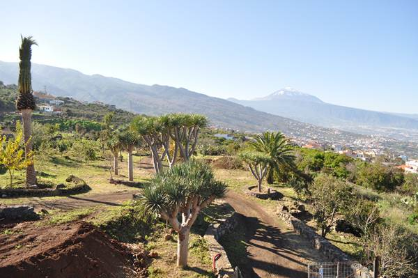 El proyecto total permitirá contar en el municipio con 57.547 metros cuadrados en el corazón de La Matanza para disfrute de los ciudadanos. | DA