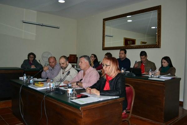 El Pleno municipal aprobó por unanimidad la factura electrónica. / DA