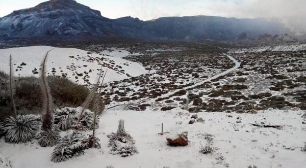La nieve volvió ayer al Teide. | TELEFÉRICO TEIDE