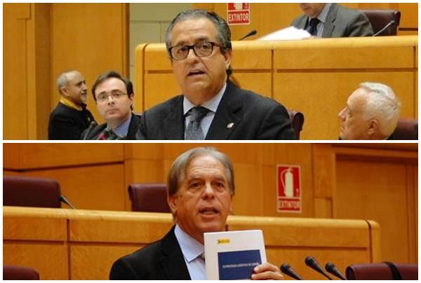 Antonio Alarcó (PP) y José Vicente González Bethencourt (PSOE), en el pleno del Senado. | DA