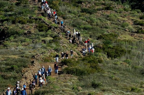 El sendero que va desde el casco de Vilaflor hasta la cueva del Hermano Pedro tiene un recorrido de 19 kilómetros. / DA