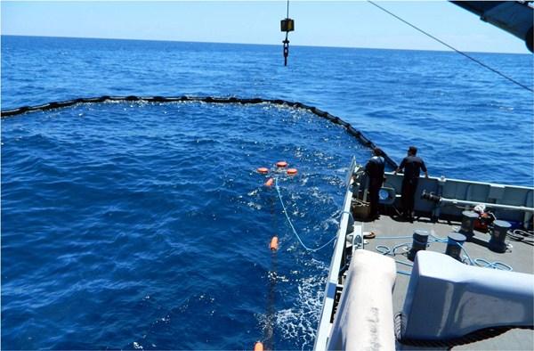 Un delfín se suma a los animales (hasta ahora tortugas y pardelas) afectados. / JUAN MAESTRO