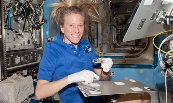 Las plantas usan un sexto sentido para crecer en la Estación Espacial
