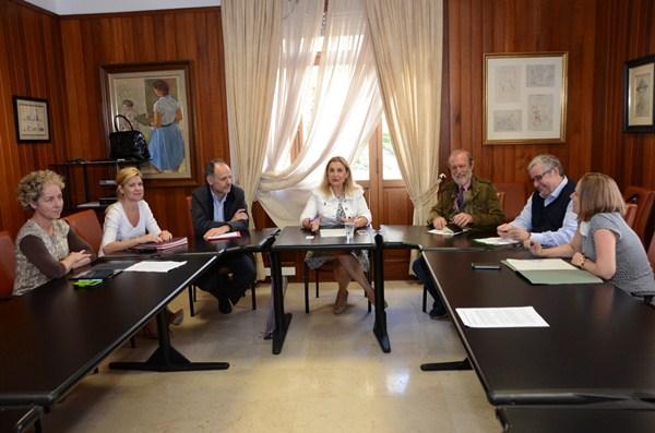 El grupo de trabajo se reunió recientemente en el Palacio Insular. / DA