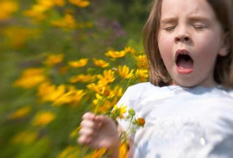 La enfermedad alérgica aumenta su prevalencia gradualmente a partir de los tres años. | DA
