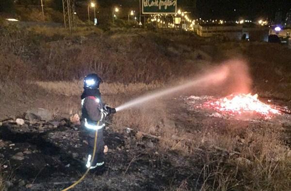 Unos 123 efectivos, entre bomberos profesionales del Consorcio y voluntarios, formaron parte del dispositivo. / DA
