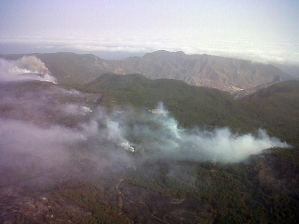 El dispositivo está preparado para proteger la masa boscosa insular ante los incendios forestales. / DA