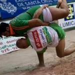 Campitos y Guamasa lucha canaria