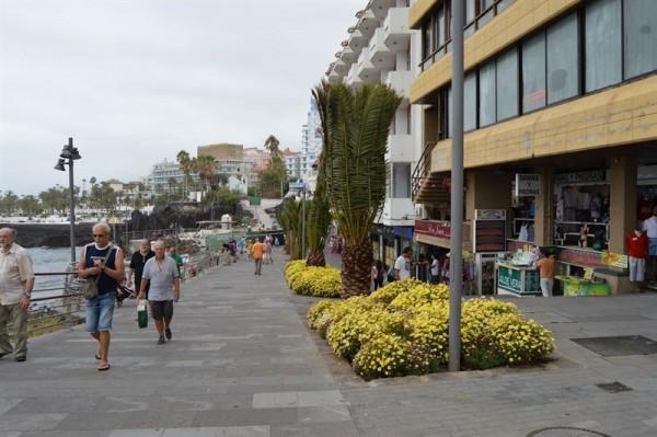La nueva imagen del Paseo San Telmo. / CEDIDA