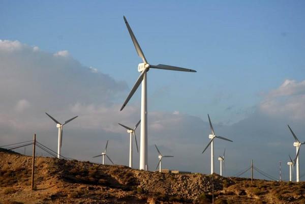 La cooperativa garantizará electricidad con energía eólica. | DA