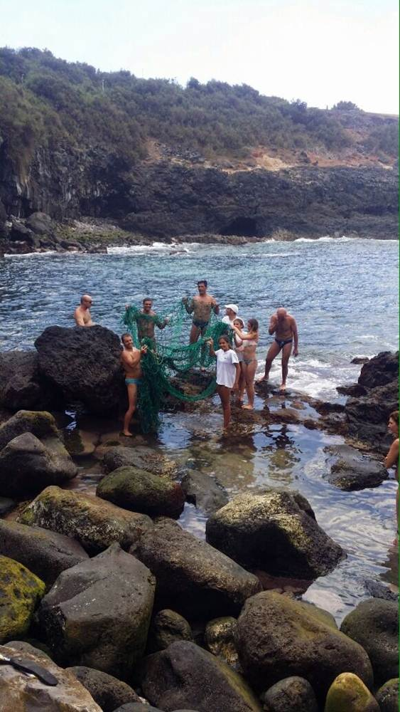 tortugas rescatadas en Tejina 7 ok