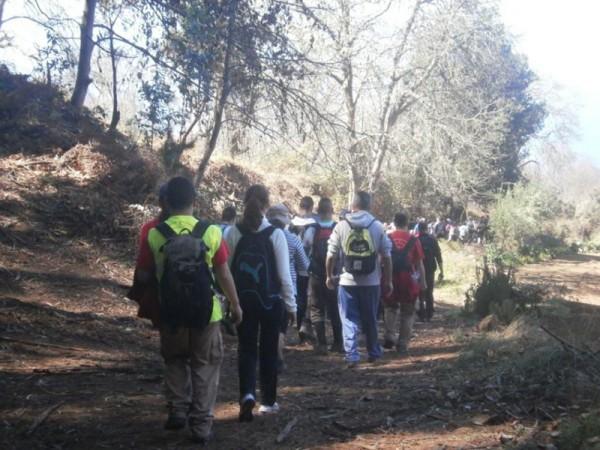 Las caminatas se convierten en la actividad más frecuente. / DA