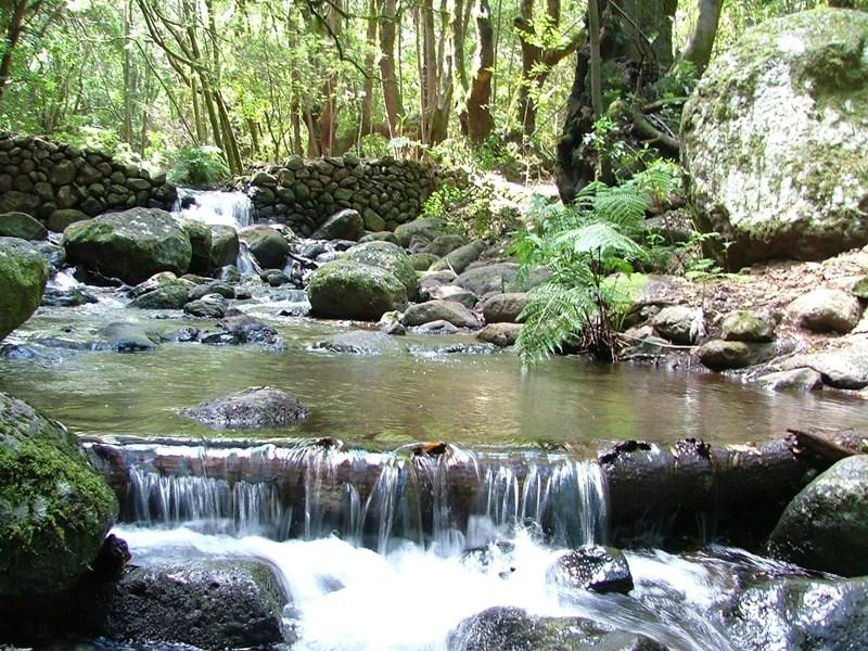 La belleza de los parajes naturales de la Isla la convierten en un destino atractivo para los senderistas. / DA
