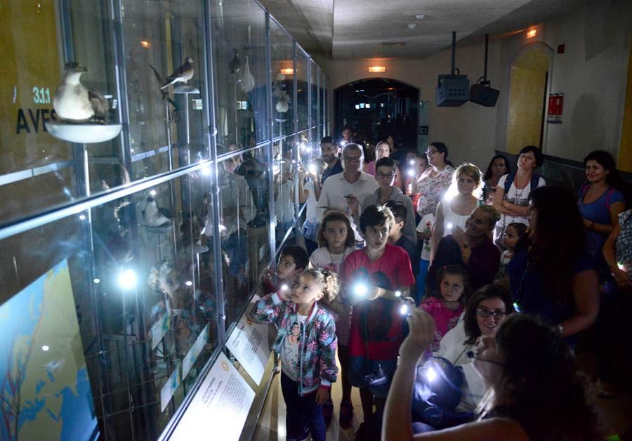 El Museo de la Naturaleza y el Hombre celebró actividades para los niños. | S. M.