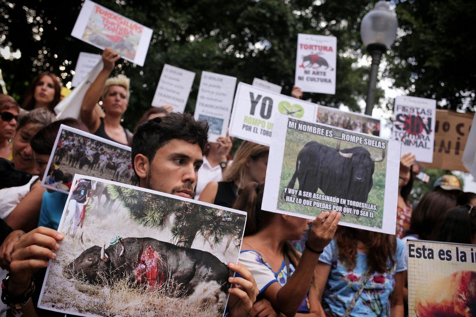 Los manifestantes portaban imágenes explícitas del sufrimiento del animal. | ANDRÉS GUTIÉRREZ