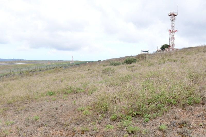 El trazado transcurre cerca de los límites de Los Rodeos. / SERGIO MÉNDEZ