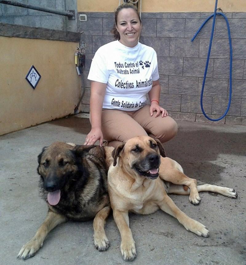 Vaitiare Rodríguez, concejala de Sanidad, con sus dos perros. / DA