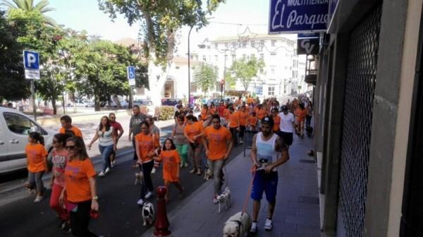 Más de 200 personas y sus mascotas participaron en el paseo. / DA