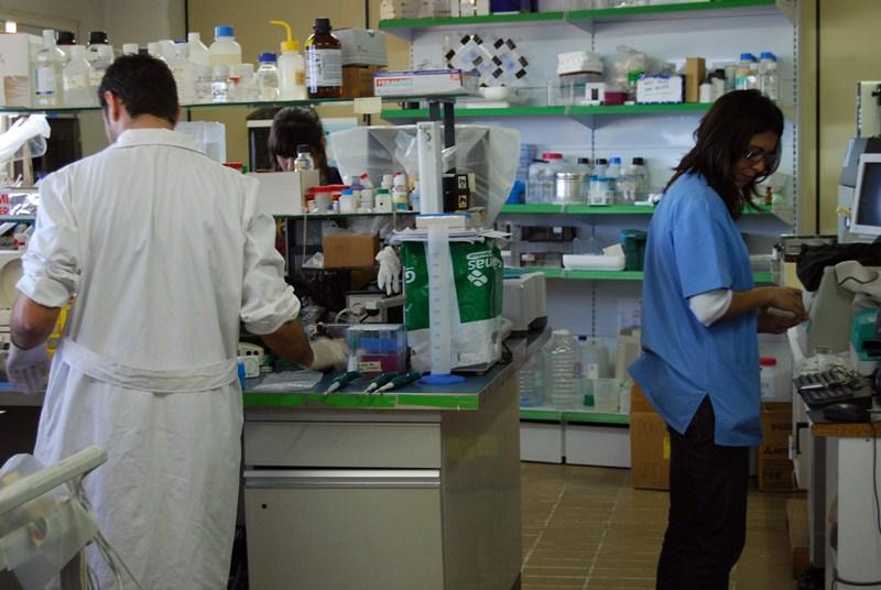 La ACIISI lleva años reclamando más apoyo para la formación de investigadores en el Archipiélago. / DA