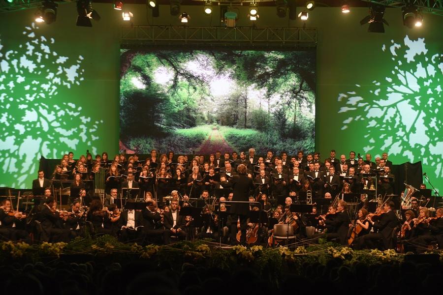 concierto navidad 2015 2