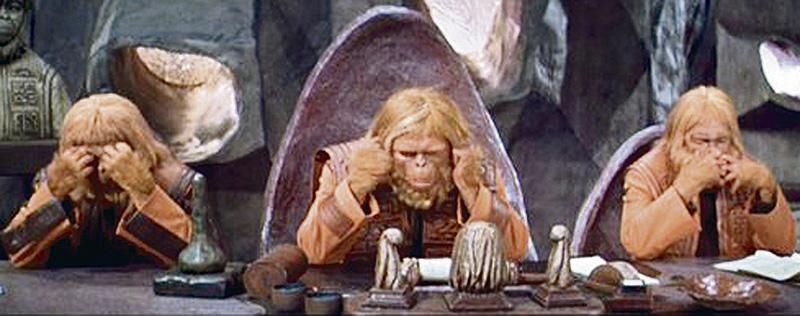 orangutanes colorados 2