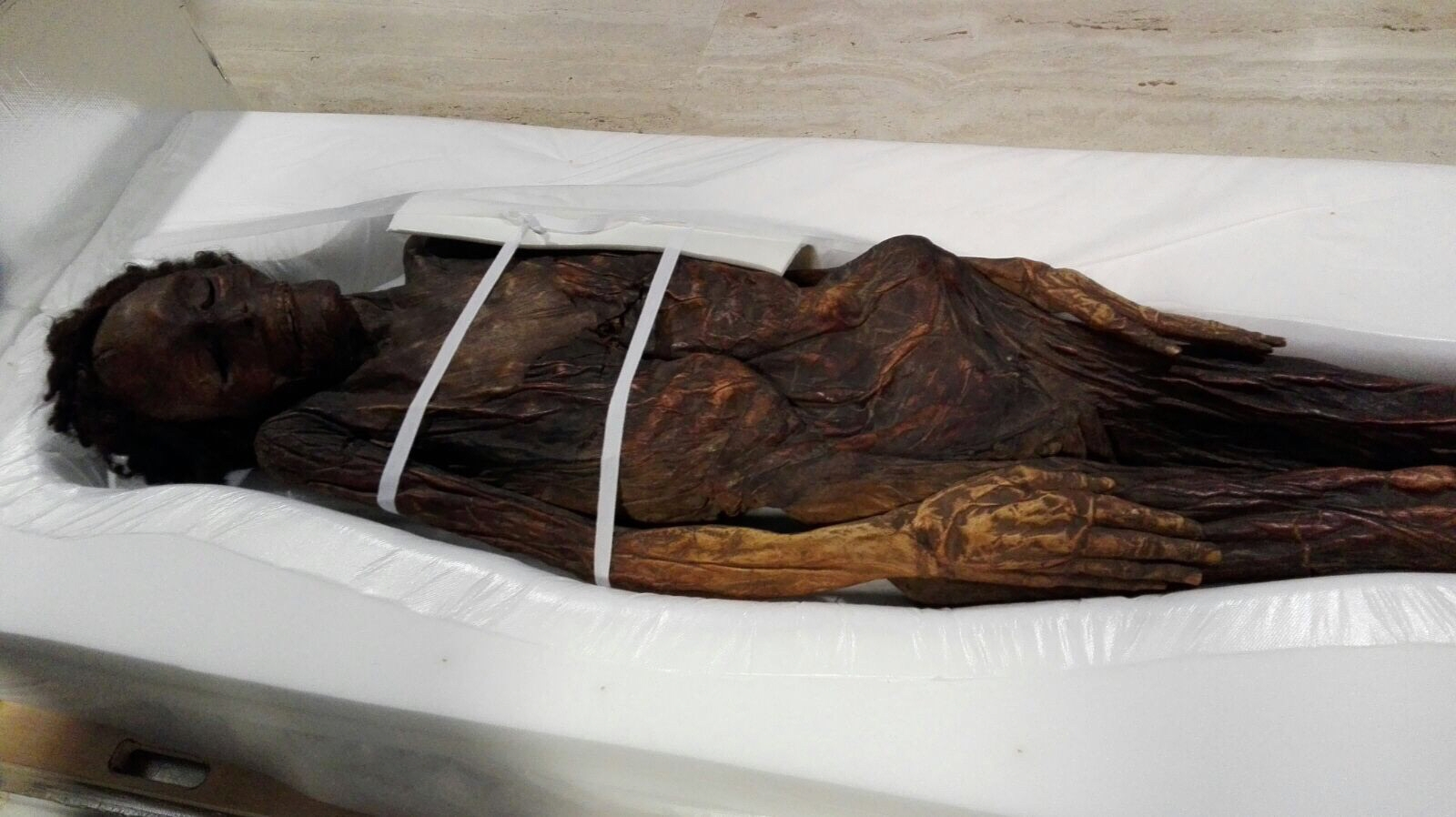 El Senado ya aprobó una moción para que vuelva a las Islas esta momia de Erques hallada en el siglo XVIII. / DA
