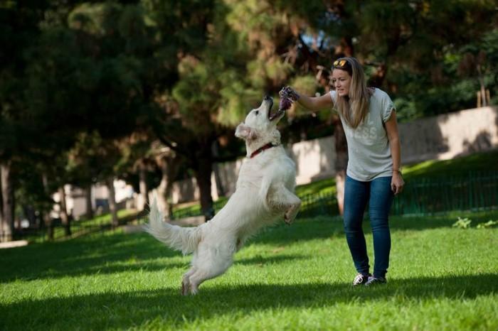 Los perros y sus dueños disfrutan ya de este nuevo espacio ubicado en la parte alta del parque. | FRAN PALLERO