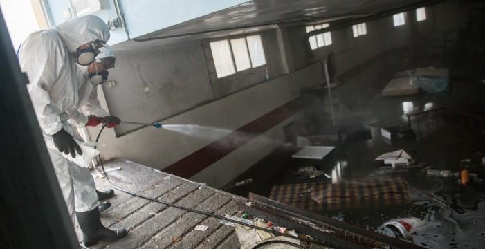 Plaga de mosquitos  neutralizada en Ofra