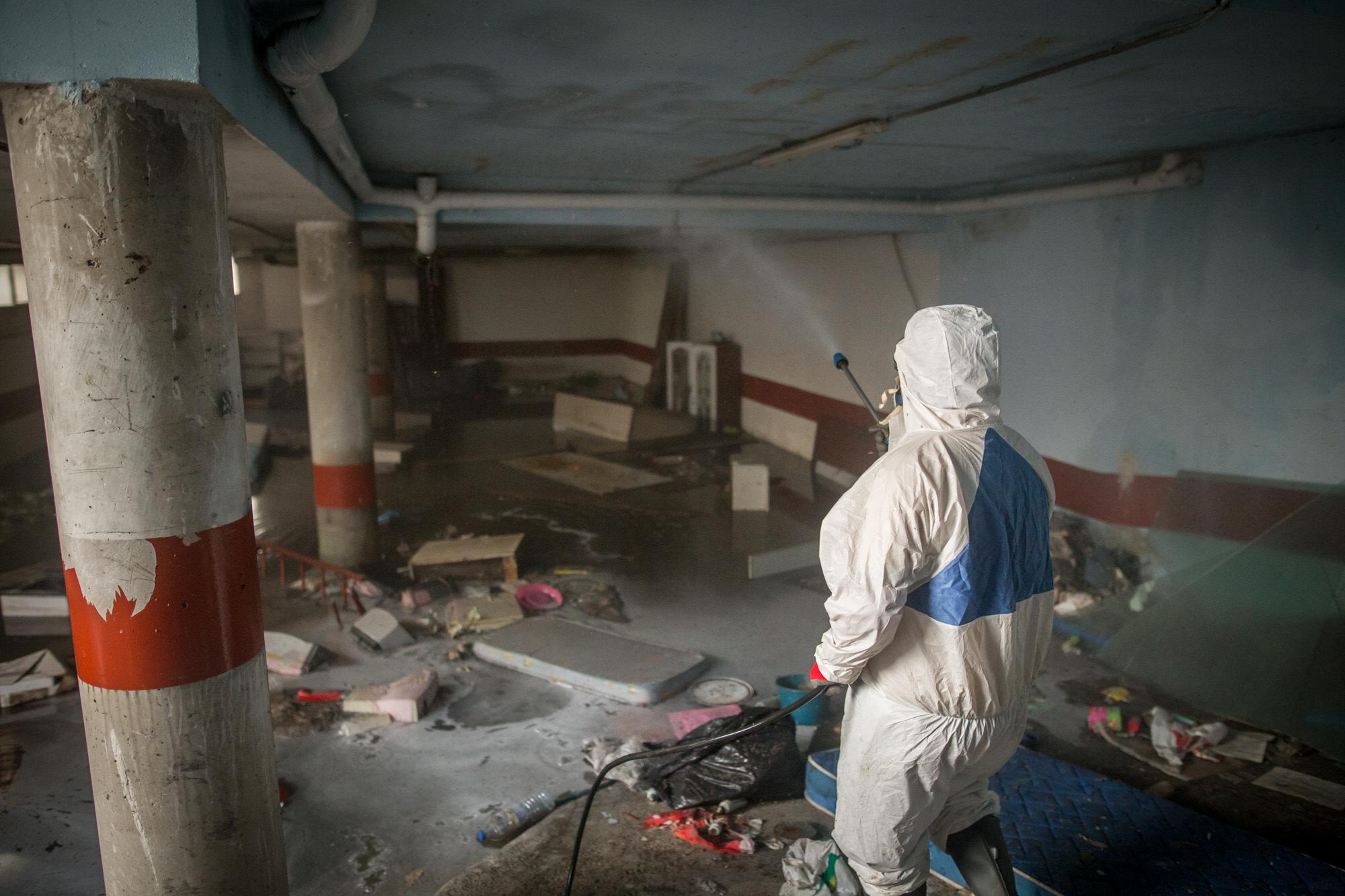 Plaga de mosquitos  que afecta a la urbanización en Finca La Multa, Ofra