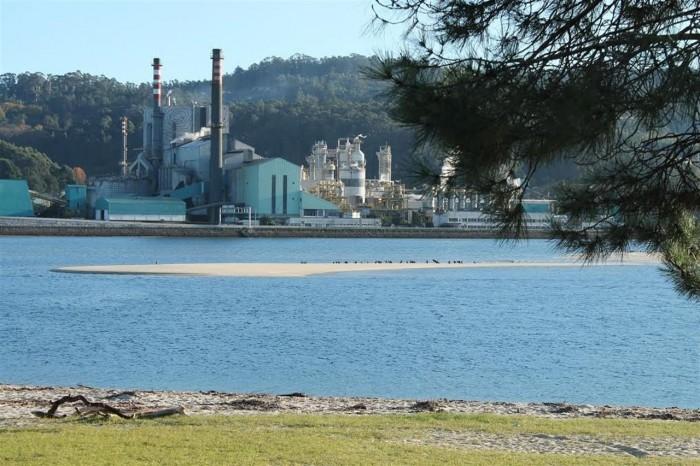 Una de las centrales de biomasa de la empresa Ence en la Península. /DA