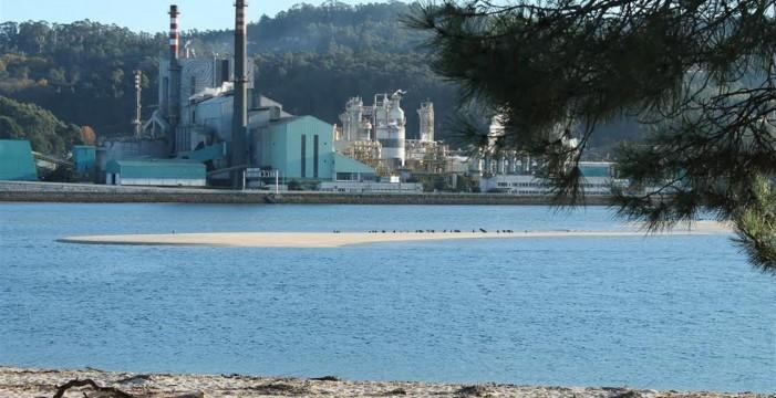 Rechazo ecologista a las plantas de biomasa previstas en Canarias