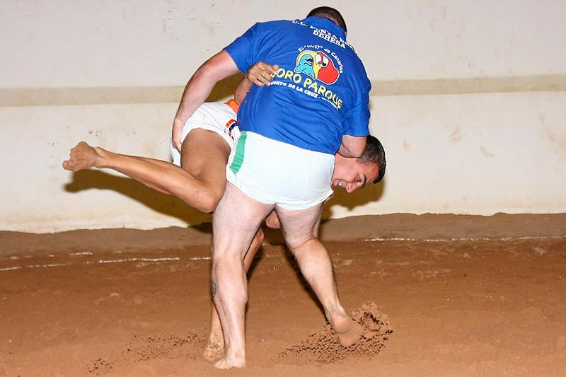Club de Lucha Punta Brava Dehesas