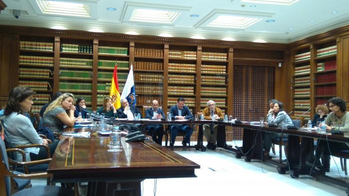 Comisión parlamentaria ante la que compareció Nieves Lady Barreto. / DA