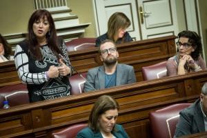 Integrantes del grupo de Podemos en el Parlamento de Canarias. / ANDRÉS GUTIÉRREZ