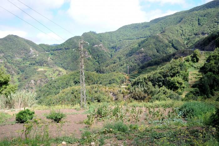 Las Carboneras, en el Parque Rural de Anaga, uno de los principales valores naturales del municipio. / S. M.