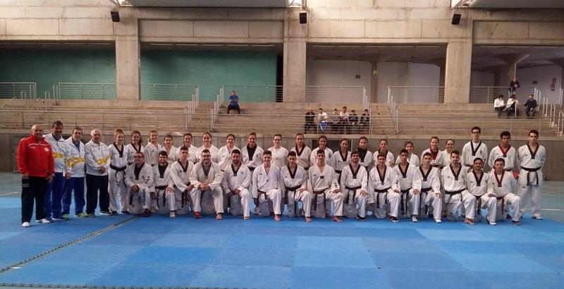 Taekwondo canarias