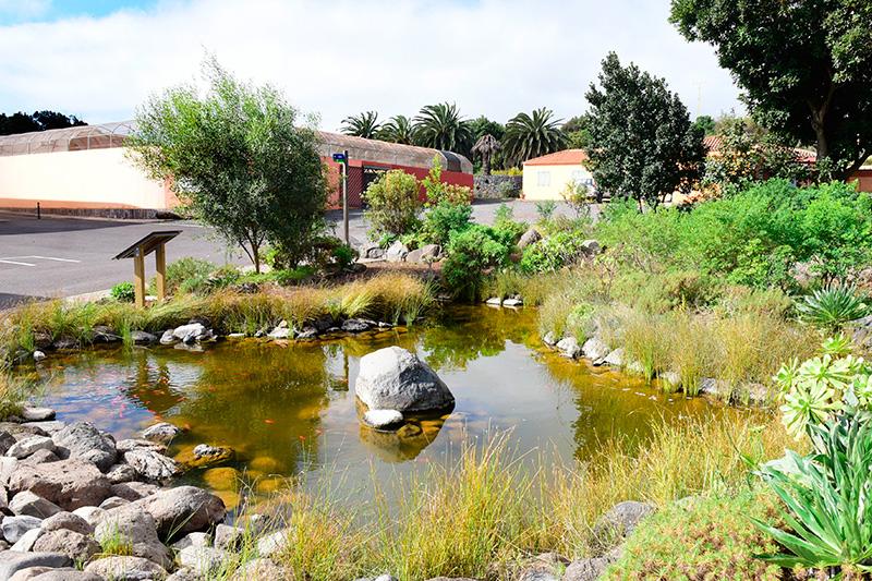 centro recuperacion aves La Tahonilla 2