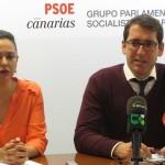 La presidenta del grupo parlamentario Socialista canario, Dolores Corujo, y el portavoz, Iñaki Lavandera. / DA