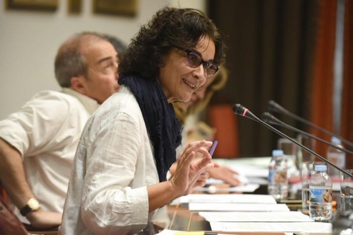 Asunción Delgado, diputada de  Podemos de quien partió la iniciativa de solicitar un informe a la Audiencia de Cuentas sobre Promotur entre 2011 y 2015. / SERGIO MÉNDEZ